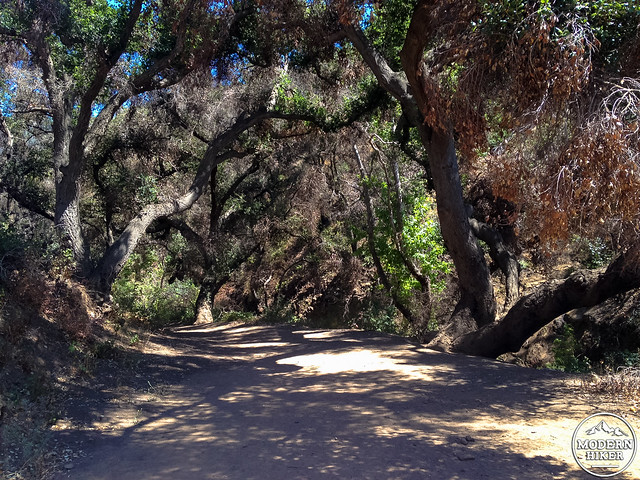 upper sycamore canyon-16