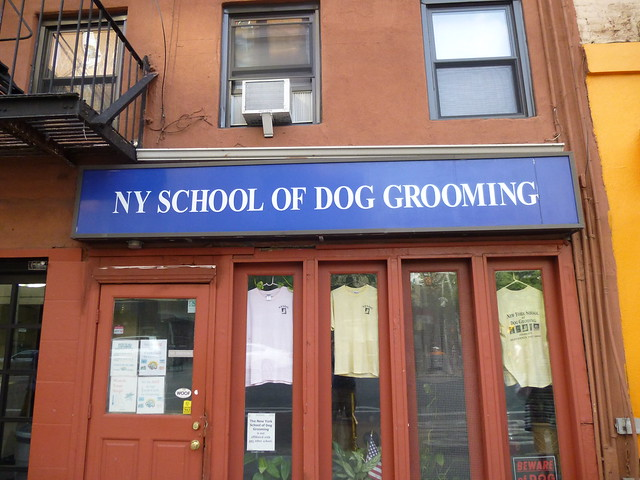 Dog Grooming Schools In Southwest Michigan