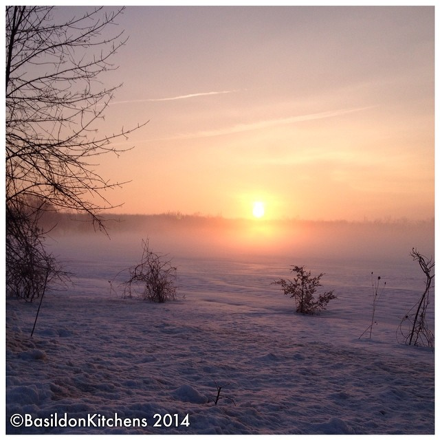 20/2/2014 peace {a gorgeous, peaceful, sunrise...before the rains predicted later} NO FILTER! #fmsphotoaday #sunrise #winter #snow #princeedwardcounty #nofilter #millerroad