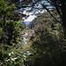 Cataract Gorge-4