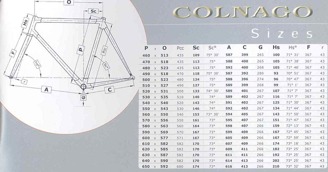 Colnago tecnos (or MXL?) HT angle? - The Paceline Forum