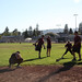 2013 Jordan Softball 002