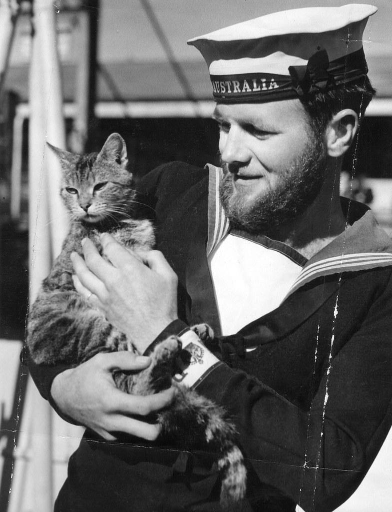 The Secret Stories >> THE HMAS AUSTRALIA [II] STORY: The cat of AUSTRALIA, ca 19… | Flickr