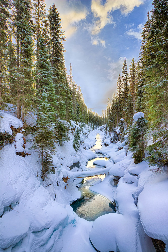canadian rockies map with 18822514516 on 18822514516 in addition Canada as well Stock Photo Wild Horses Kananaskis Winter Scenery Canadian Rockies Image55790340 further National Parks Tour further banffparklodge.