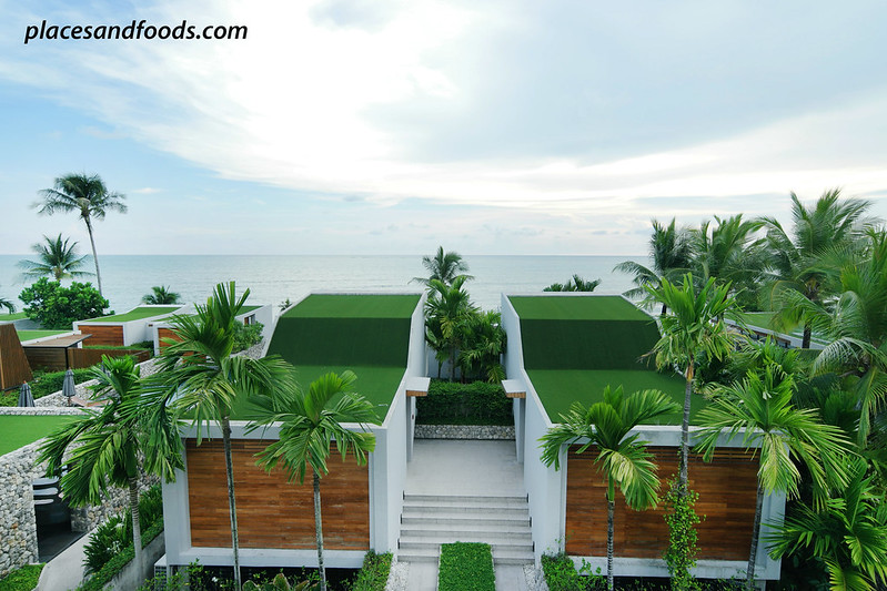 casa de la flora rooftop