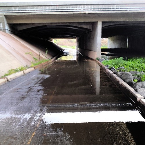 Guadalupe River Trail @ Hwy 101 is passable. #sanjose #rain
