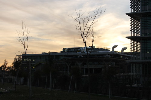 2014.02.02.079 - SEVILLA - Campus Palmas Altas