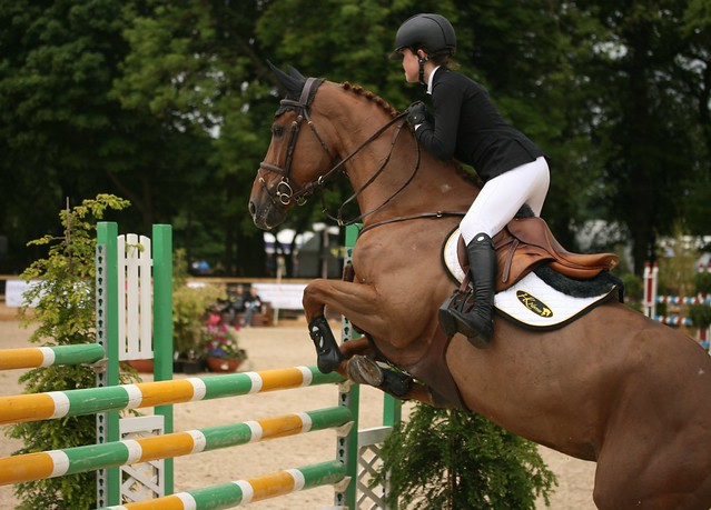 Showjumping Talentseekers