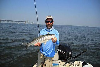 Photo of man holding striped bass by the bay bridge.