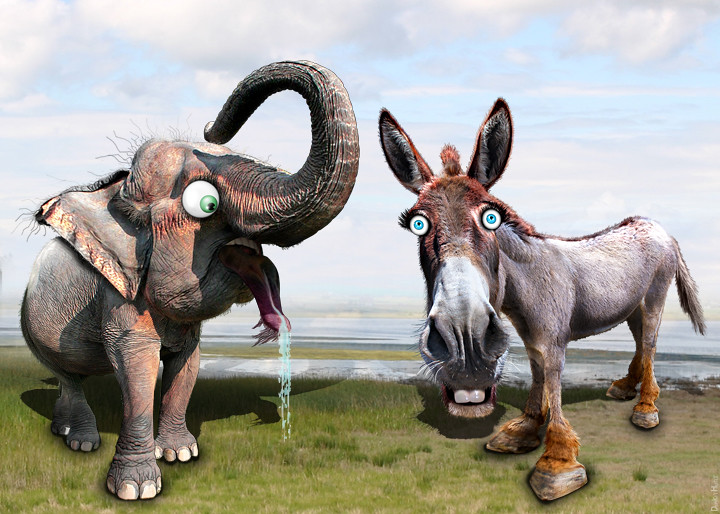 Image result for democrat republican politics