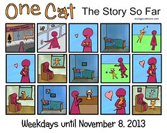 One Cat, The Story So Far
