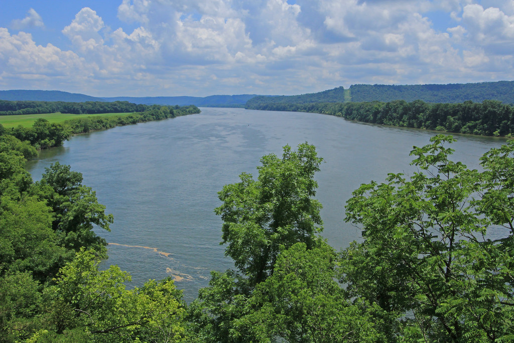 Tennessee river wheeler lake marshall county alabama 1 for Wheeler lake fishing report