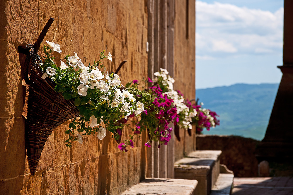 Flower Festivals around Siena