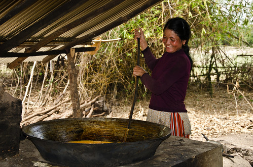 Palm sugar production | by UNDPCambodia