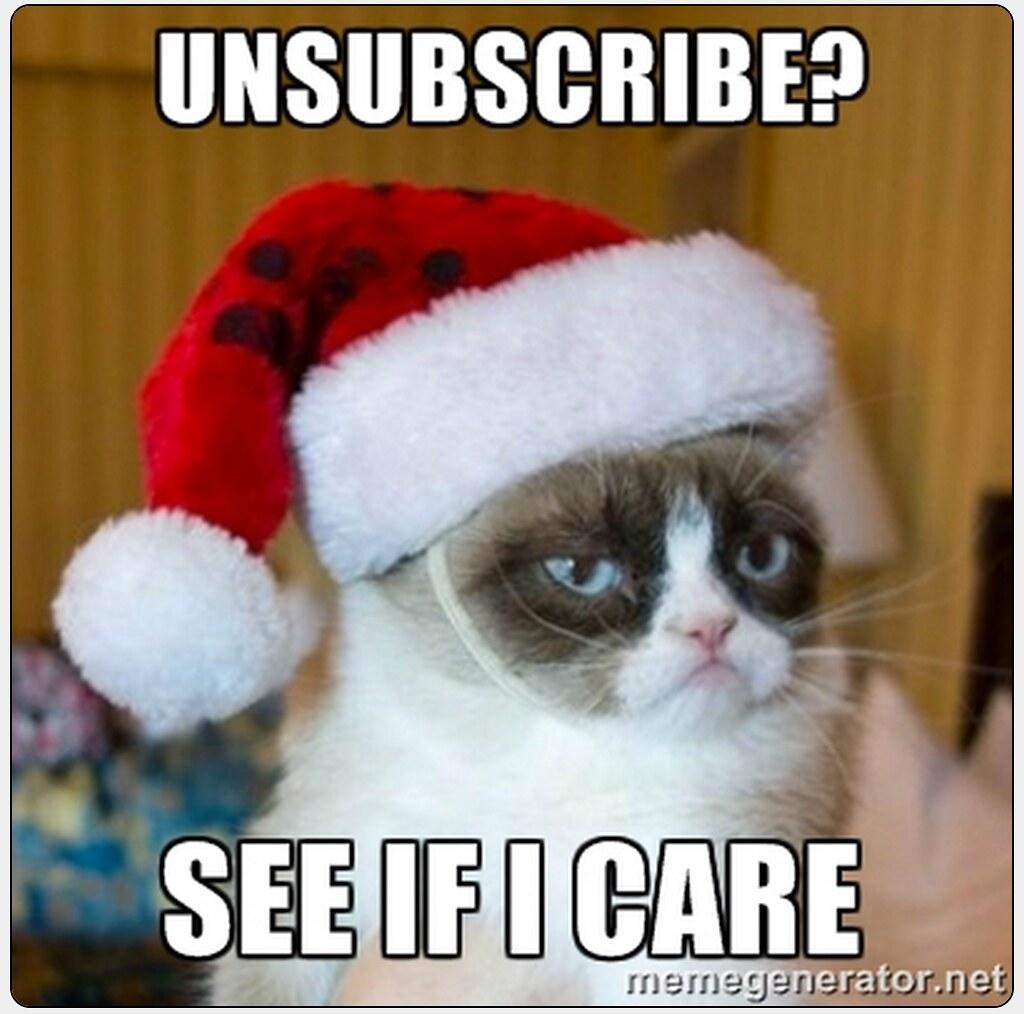 Grumpy Cat In A Santa Hat