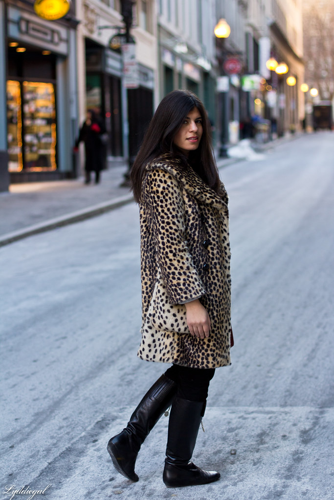 grey sweater, leopard coat-3.jpg