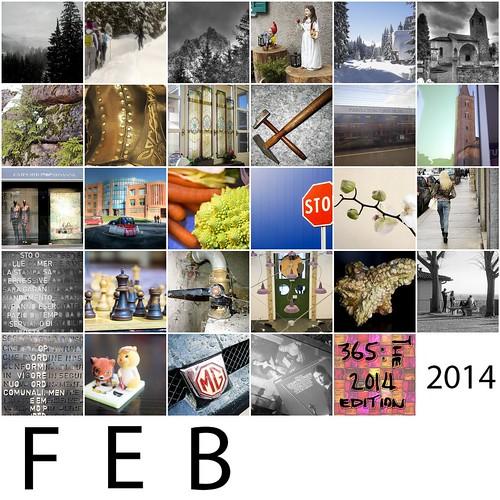 365_2014_FEB