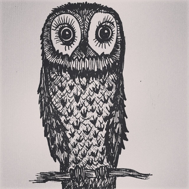 Owl Doodle Drawing Owl Drawing Doodle