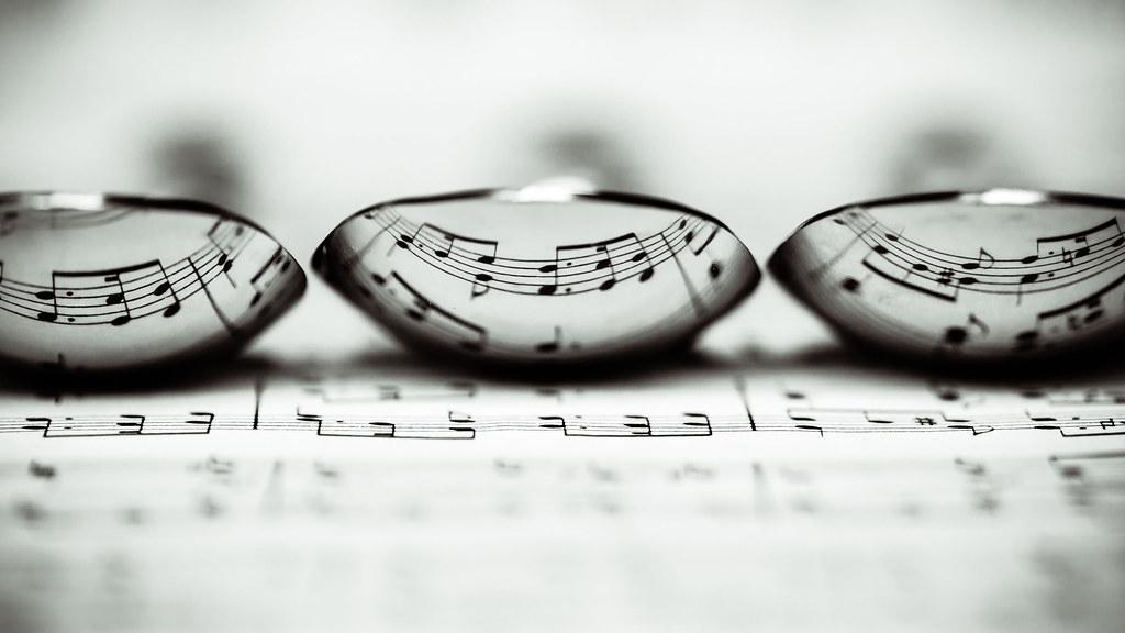 Trio | Also on 500px. | Laurens Kaldeway | Flickr