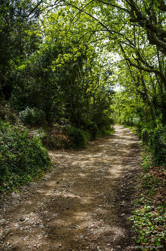 Camino de Marmellar cerca de la Font de la Moja