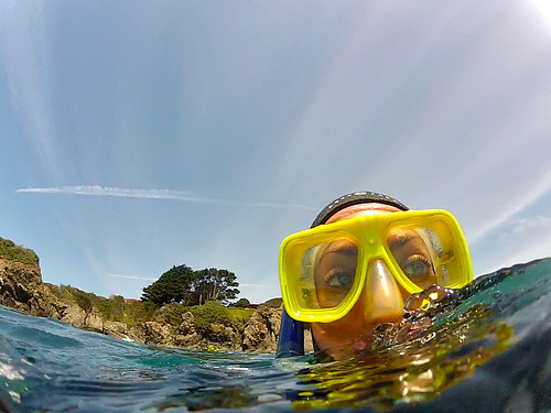 Free Diving Northern California - Mendocino, CA