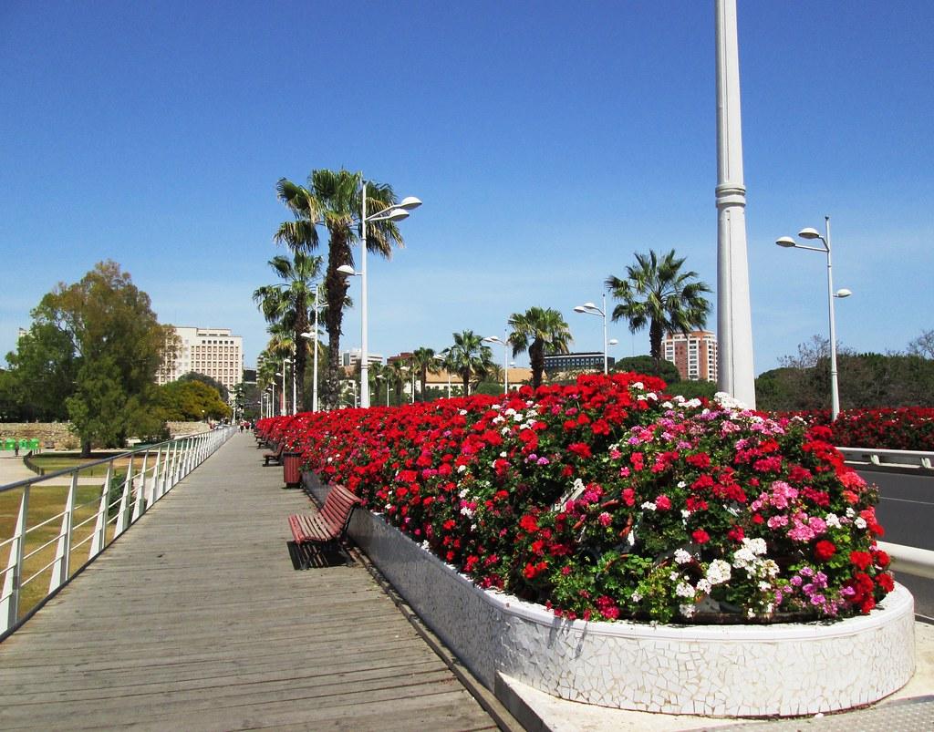 Bridge with flowers in jardines del turia valencia 2 flickr - Jardin del turia valencia ...