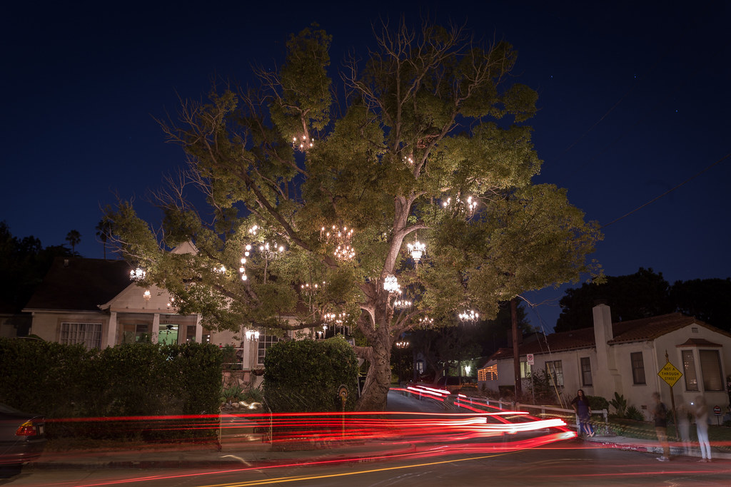 The Chandelier Tree in Silver Lake. | nshtnnrng | Flickr