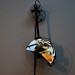 Pendulum / Sanela Jahic (SL)