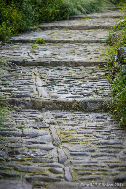 Caminos de piedra mojada flickr photo sharing for Camino de piedras para jardin