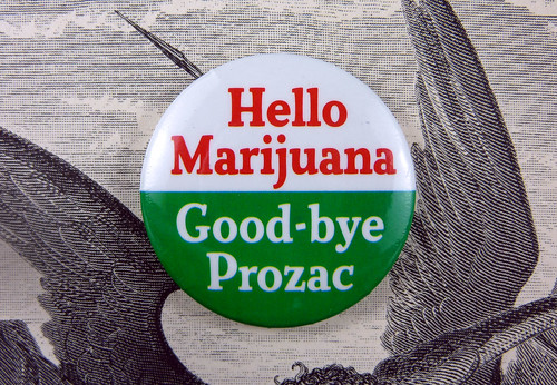 Prozac Makes Better Christians but Marijuana Makes Better Brownies