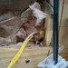 Mouse Eaten Wire and Insulation in Solar Shed