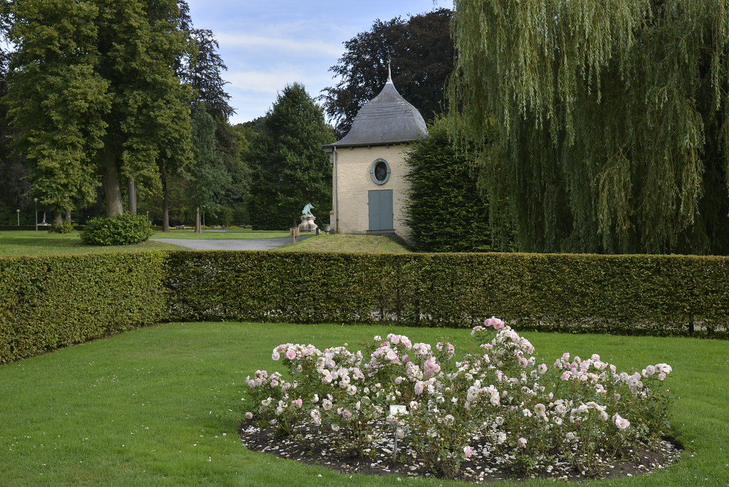 Un parterre de roses blanches stephane mignon flickr for Parterre 3d