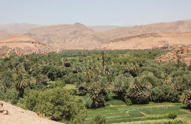 Morocco Oasis Health Raw Food Farm