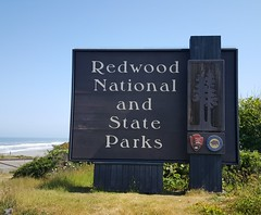 Redwood National and State Parks - a joint venture