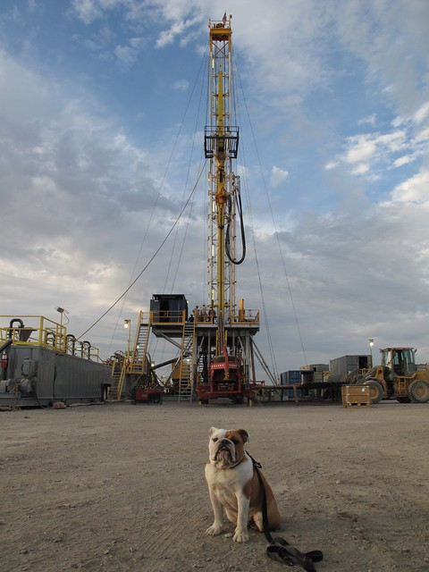 Global geothermal news 9000 geothermal test hole 82 36 located at nas fallon nevada dog is odin taken october 2013 drilling contractor barbour well sciox Gallery