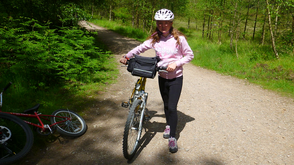Forest of dean, family cycleway, cycling