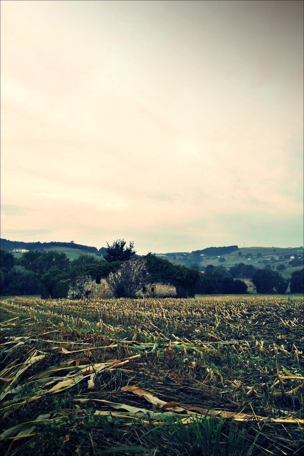 농촌-'카미노 데 산티아고 북쪽길. 노하에서 궤메스. (Camino del Norte - Noja to Güemes)'