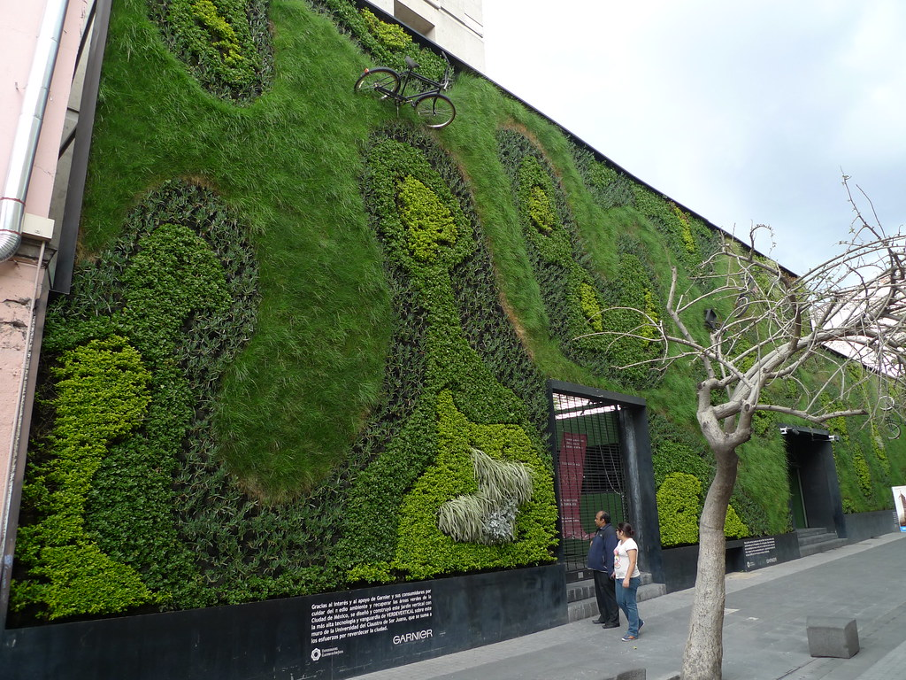 Mexico city green wall mark hogan flickr for Green wall system