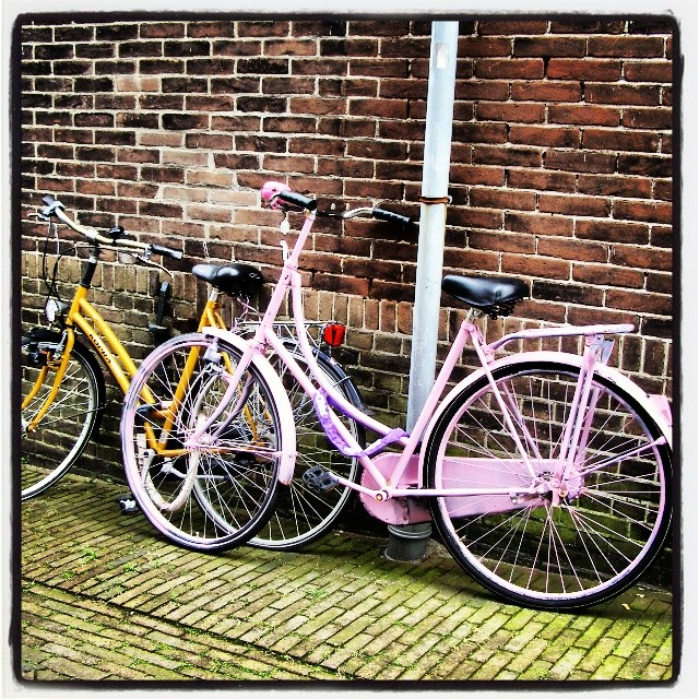 fahrrad haarlem niederlande holland pink pfingsten flickr. Black Bedroom Furniture Sets. Home Design Ideas