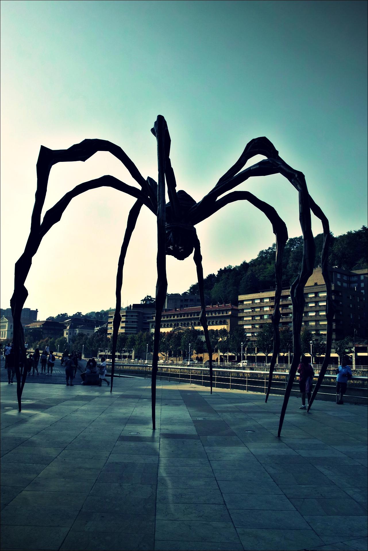 거미-'카미노 데 산티아고 북쪽길. 빌바오. (Camino del Norte - Bilbao)'