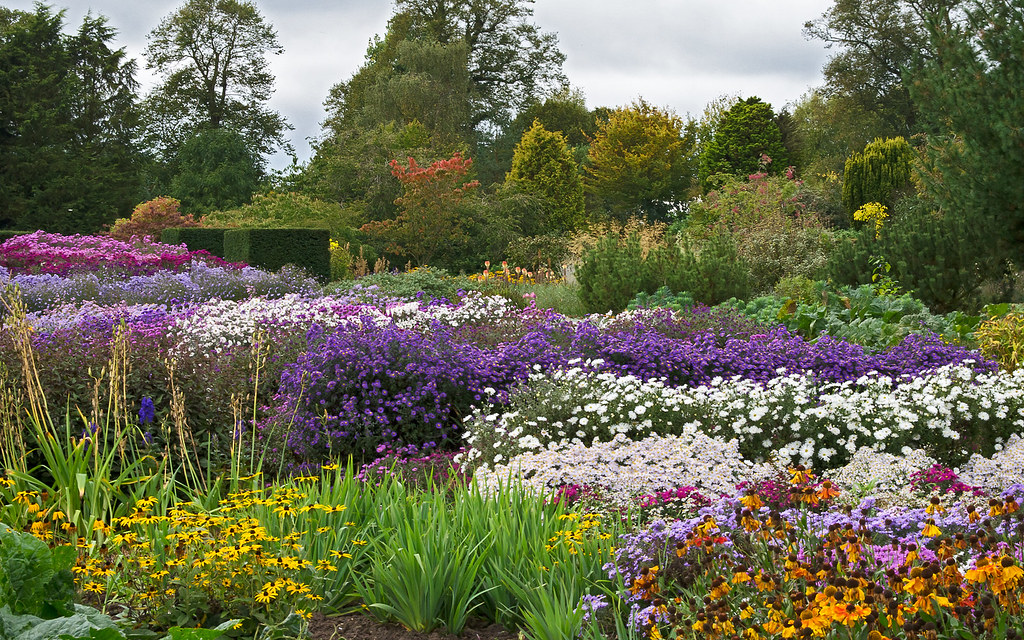 English Herbaceous Borders Waterperry Gardens Oxfordshi