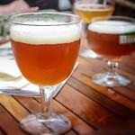 SchuppenAas (6.5% de alcohol) [Nº 138]