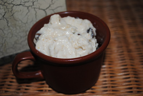 oatmeal raisin cookie frozen yogurt (1)