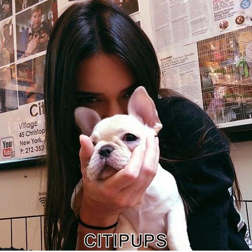 cute FlashAnnotate-1. Kendall...