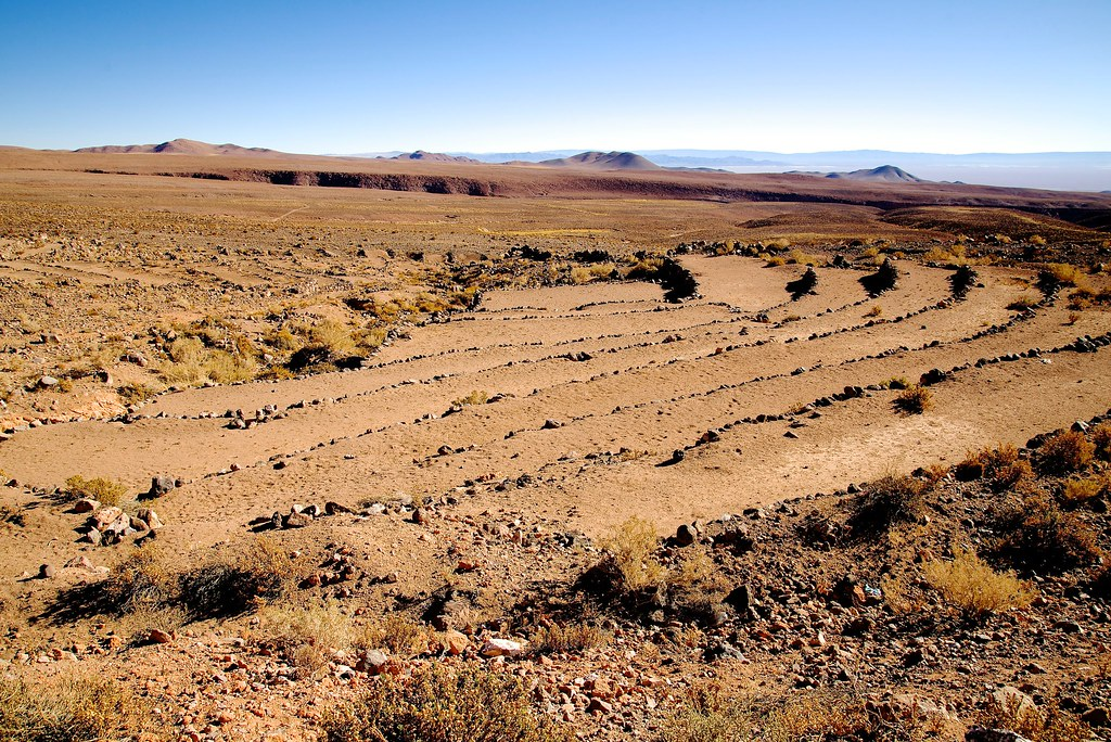 Terrazas De Cultivo Socaire San Pedro De Atacama El Loa