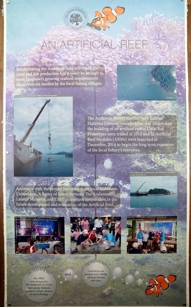 Andaman langkawi - coral nursery-006