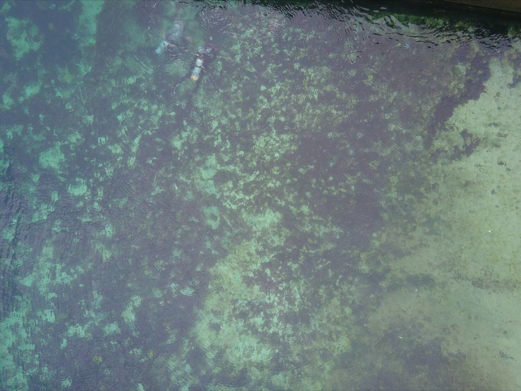 綠島油污事件