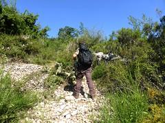 Recherche des bergeries de Vitellile : début des ennuis de maquis