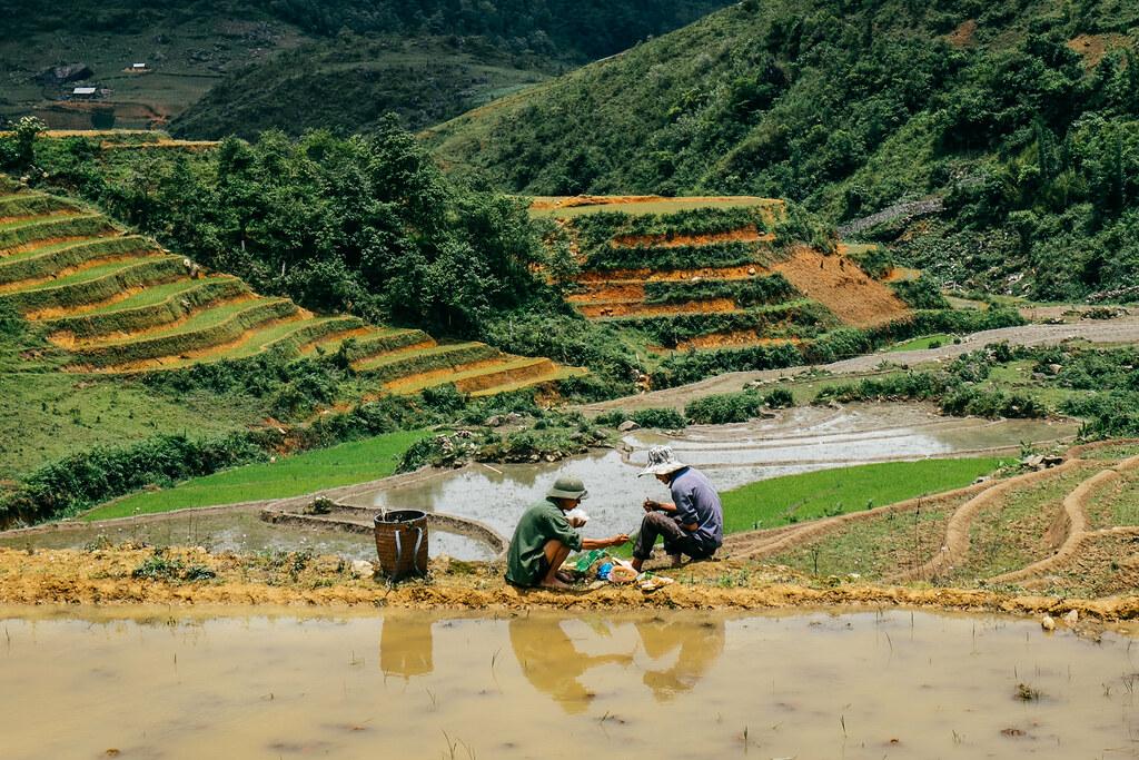Rice terraces in Ta Phin Village