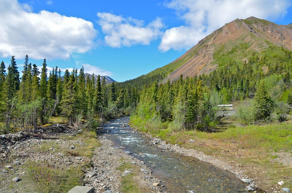 Denali Tundra Wilderness Tour Holland America
